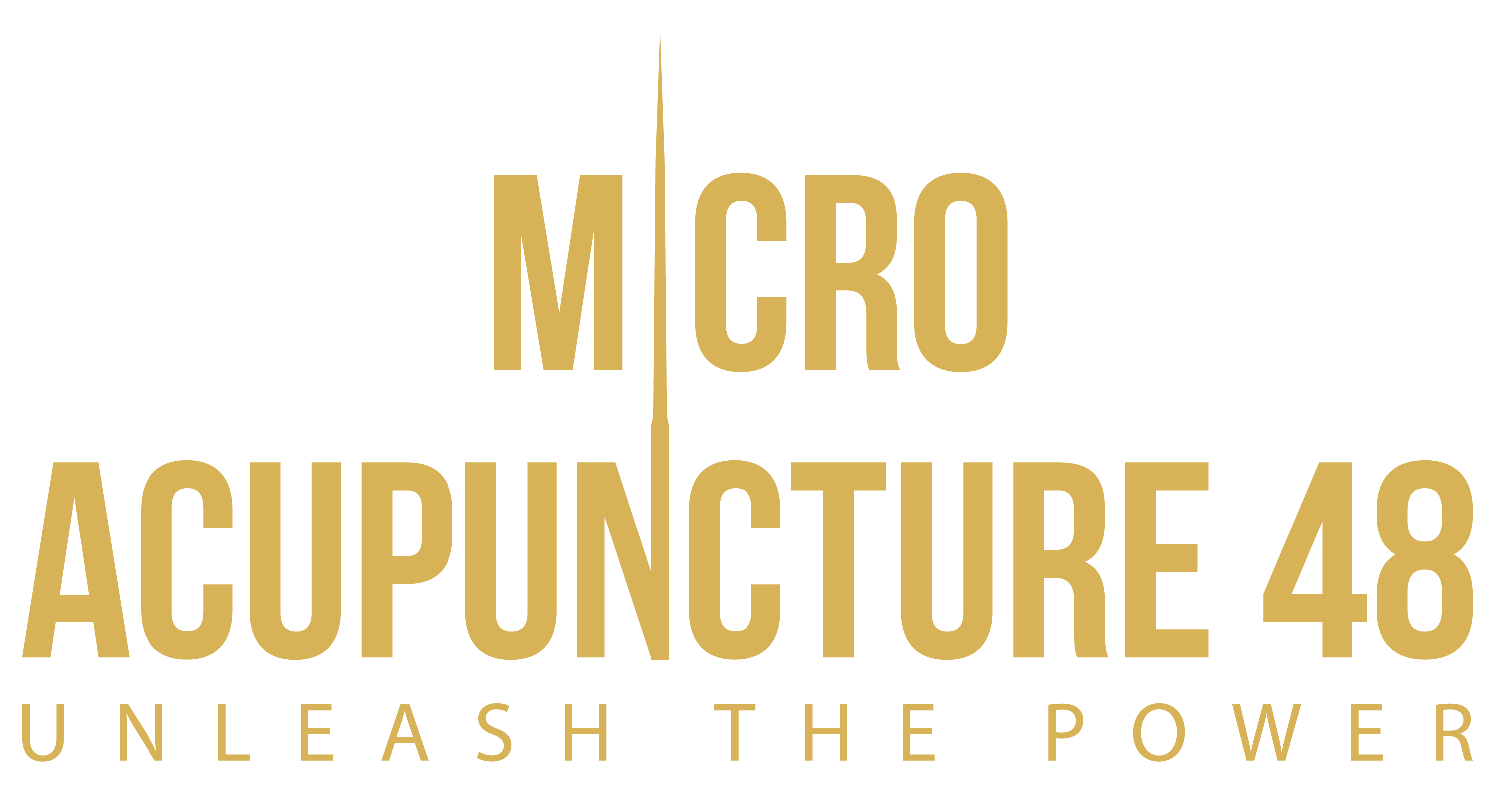 Micro Acupuncture 48 certification: Unleash the Power